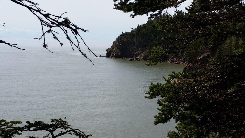 """Ein Blick von den Klippen im """"Fundy National Park"""""""